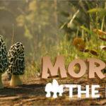 Morels The Hunt Spring-PLAZA